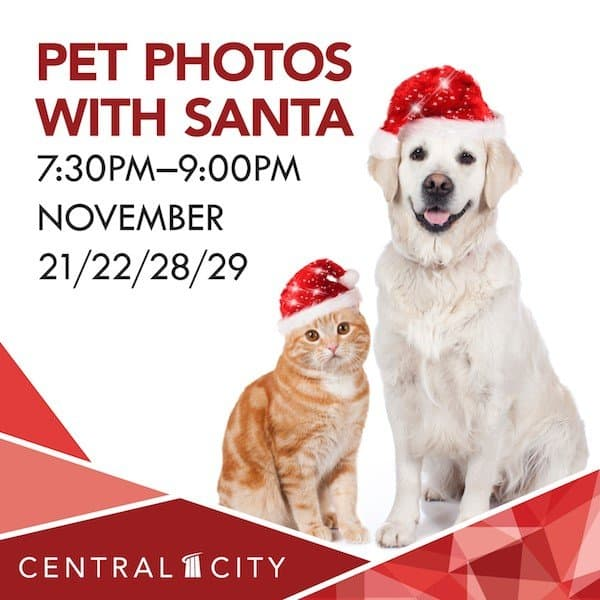 Pet Photos with Santa at Central City Surrey